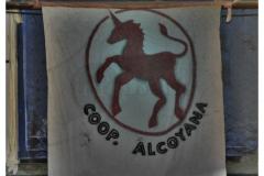 Alcoyana Cooperativa Inforbano 0